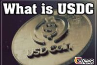 USDC is an alternative to other USD backed cryptocurrencies likeTether (USDT) orTrueUSD(TUSD)