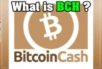 What is Bitcoin Cash (BCH) Cryptocurrency ? [Everything U Need to Know] blockchain, blockchains, cryptocurrencies, decentralized,
